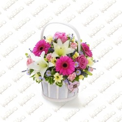 Daisy Flowery Arrangement