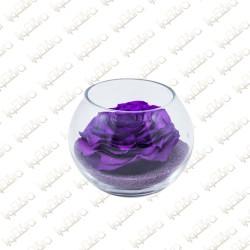 Violeta Forever Flowers